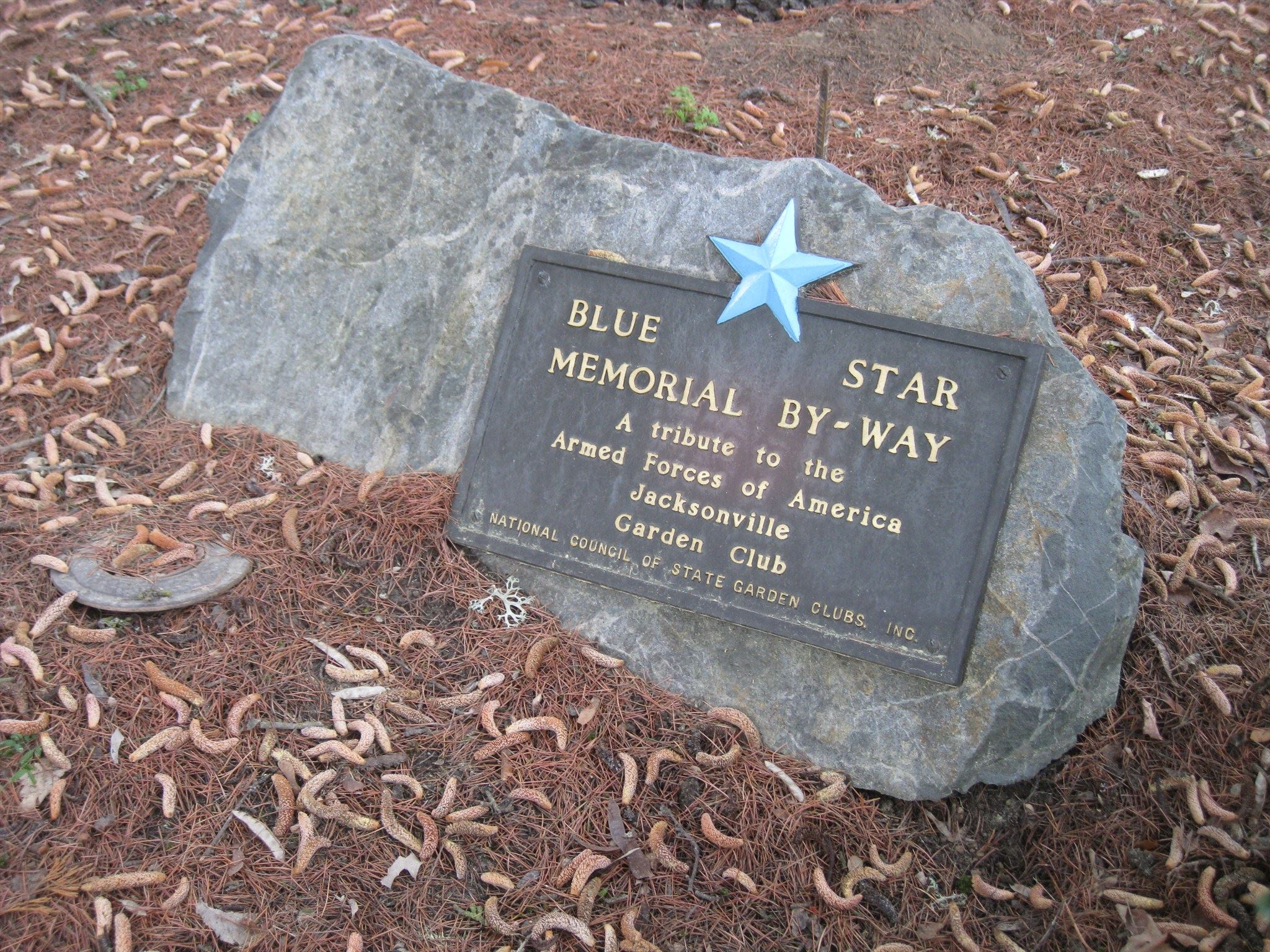Veterans Park Blue Star Memorial